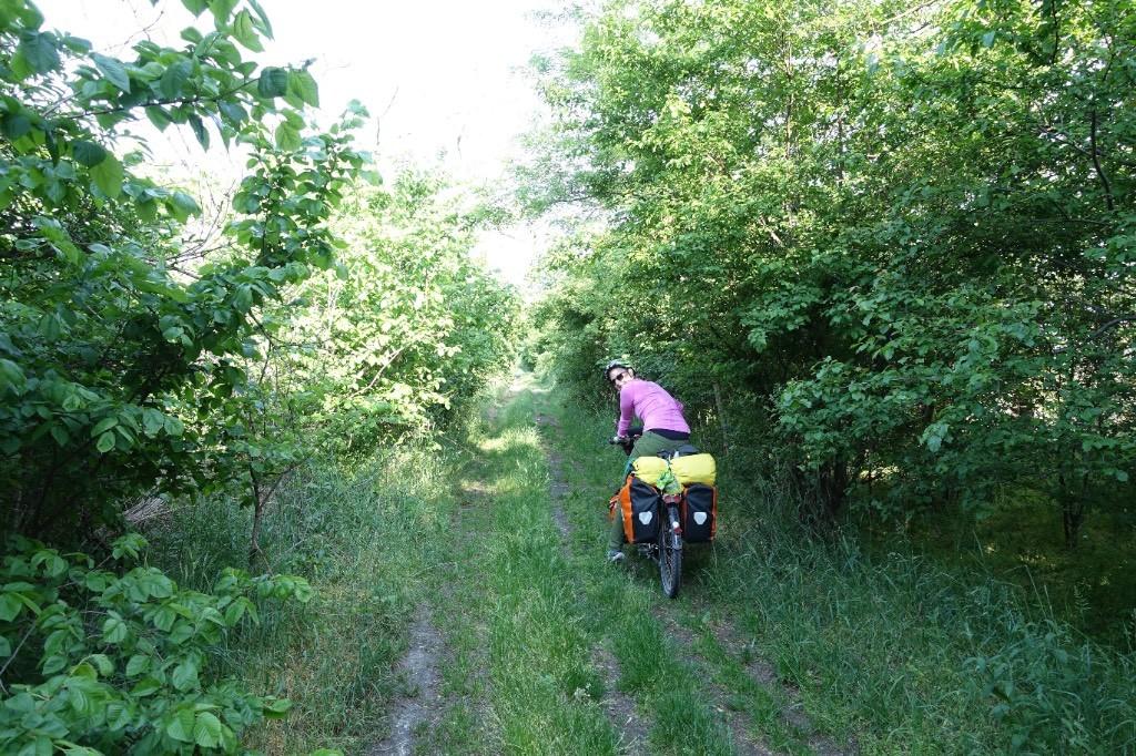 Offroad im slowakischen Dschungel