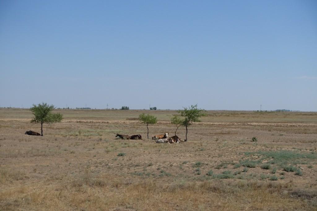 Kasachstan_Teil1_15