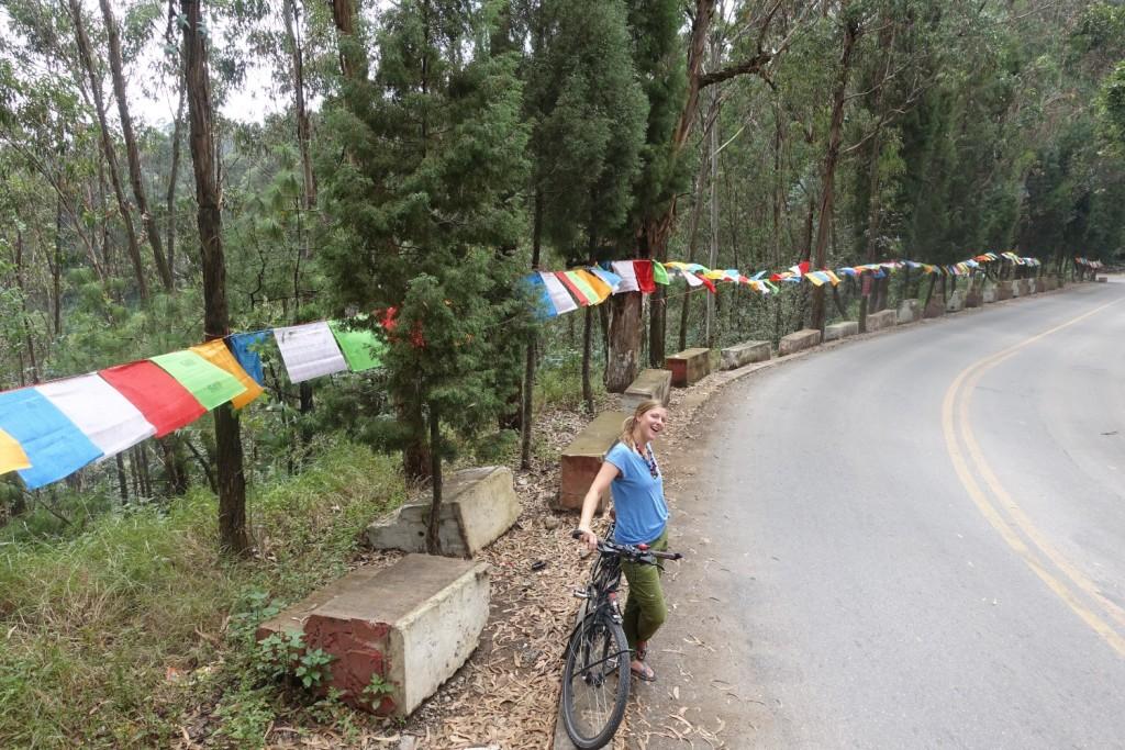 auf dem Weg zum Bambus-Tempel