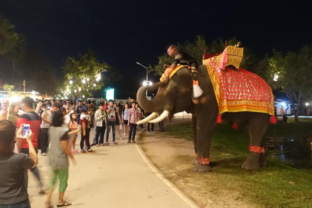 riesige Elefanten einfach so unter der Menschenmenge