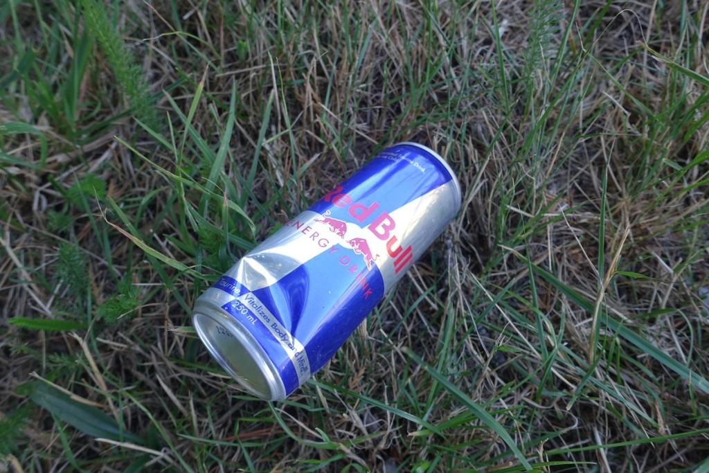 seltener aber typischer Müll neben der Straße
