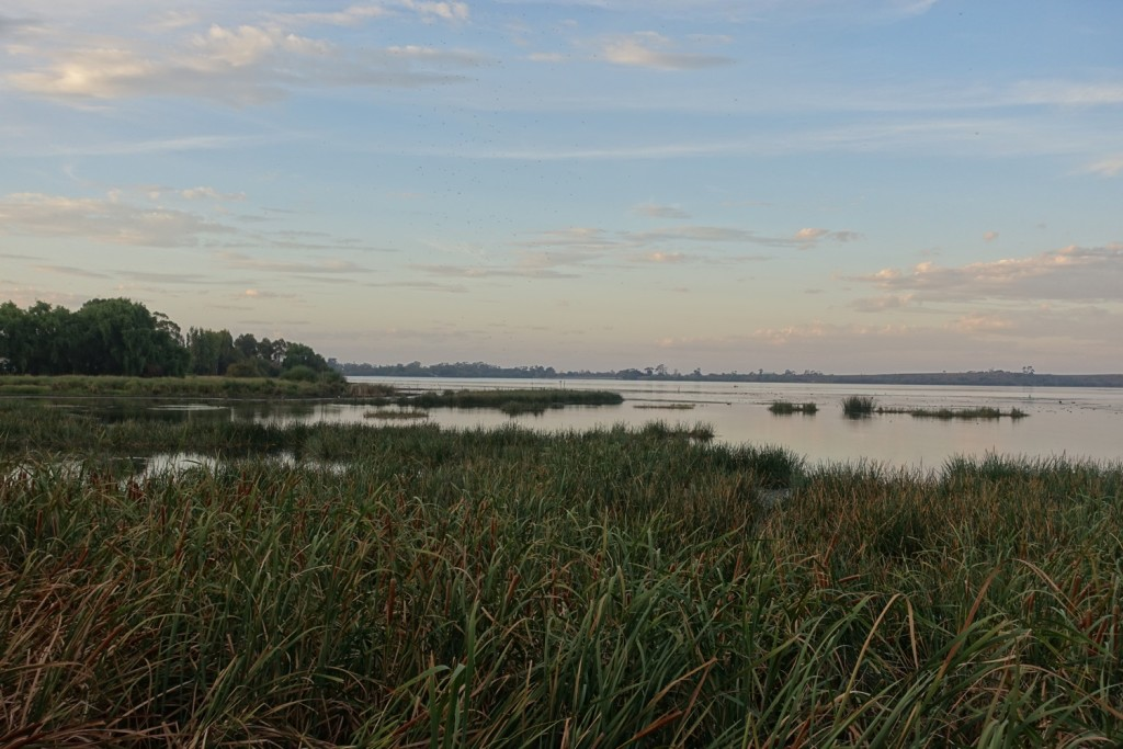 am Lake Purrumbete